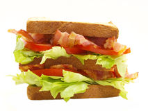 Doppeltes blt Sandwich Stockfoto