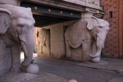 Doppeltes Elefanttor lizenzfreie stockfotografie