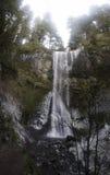 Doppeltes fällt silberner Fall-Nationalpark Stockfotos