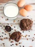 Doppi biscotti del cioccolato fotografia stock