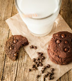 Doppi biscotti di pepita di cioccolato Immagine Stock Libera da Diritti