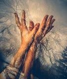 Doppia esposizione delle mani della femmina fotografie stock libere da diritti