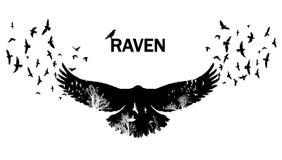 Doppia esposizione volante del corvo illustrazione vettoriale