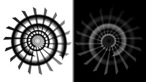 Doppia spirale di BW Fotografia Stock