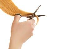 Doppie punte tagliate mano dalle forbici dei capelli Fotografie Stock