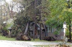 Doppio albero whammy dall'uragano Sandy Fotografia Stock
