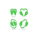 Doppio logo di vettore della foglia Fotografia Stock Libera da Diritti