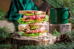 Doppio panino casalingo con carne e le verdure Immagini Stock