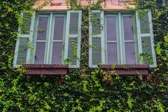 Doppio Windows Fotografie Stock