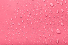 Dops of water on a color background. Pink. Toned Stock Photography