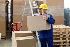 Doręczeniowego pracownika rozładunkowi kartony od barłóg dźwigarki Obraz Royalty Free
