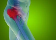 Dor conceptual da anatomia do corpo humano no verde Foto de Stock Royalty Free