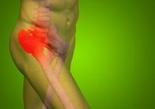 Dor conceptual da anatomia do corpo humano no verde Fotografia de Stock Royalty Free