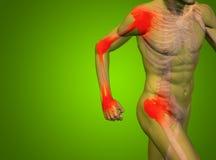 Dor conceptual da anatomia do corpo humano no verde Imagem de Stock