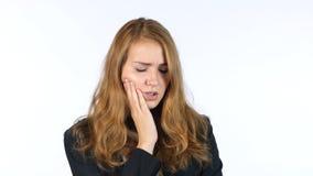 Dor de dente de Suffering From da mulher de negócios, fundo branco Imagens de Stock Royalty Free