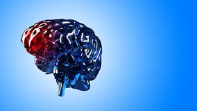 Dor de esqueleto do cérebro foto de stock royalty free