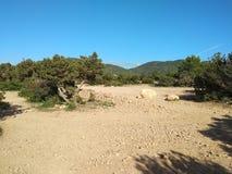 Dor en onvruchtbaar land in het ibizaachterland het droge klimaat verlaat de grond aan het licht gebracht, is het land droog rond stock foto