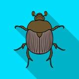 Dor-kever pictogram in vlakke die stijl op witte achtergrond wordt geïsoleerd De voorraad vectorillustratie van het insectensymbo royalty-vrije illustratie