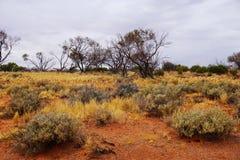 Dor Land, Roxy Downs, binnenland Zuid-Australië Royalty-vrije Stock Fotografie
