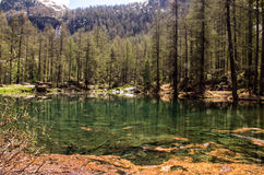 Dora, rio de fluxo da água em um ambiente da montanha Montanhas com água Fotos de Stock