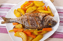 Dorada baked with potatoes Royalty Free Stock Images