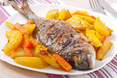 Dorada baked with potatoes Stock Photo