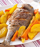 Dorada baked with potatoes Stock Image