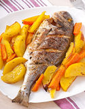 Dorada baked with potatoes Stock Photography