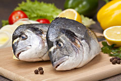 Dorada-Fische mit Gemüse, Zitrone und Gewürzen Stockbild