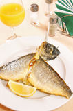 Dorada fish on a plate Stock Image