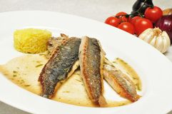Dorada fish with risotto Stock Photo