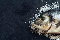 Dorada fiskhuvud Arkivfoton
