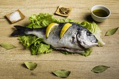 Dorada fresh fish on lettuce leaves next to some bay leaves, some pieces of lemon, a bowl of oil and some spices on a wooden table. Dorada fresh fish on lettuce royalty free stock photo