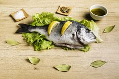 Dorada fresh fish on lettuce leaves next to some bay leaves, some pieces of lemon, a bowl of oil and some spices on a wooden table. Dorada fresh fish on lettuce royalty free stock photos