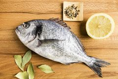 Dorada fresh fish next to some bay leaves, a piece of lemon and some spices on a wooden table. Dorada fresh fish next to bay leaves, a piece of lemon and some royalty free stock photography