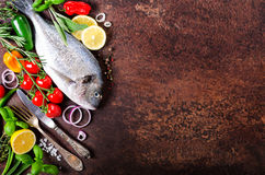 Dorada, fresh fish with vegetable, lemon, herbs, onion, paprika, cherry tomatoes, onion, salton dark vintage background. Copy spac Royalty Free Stock Photos