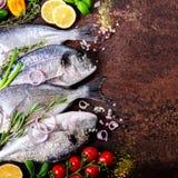 Dorada, frischer Fisch mit Gemüse, Zitrone, Kräuter, Zwiebel, Paprika, Kirschtomaten, Zwiebel, salton dunkler Weinlesehintergrund Lizenzfreie Stockbilder