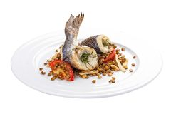 Dorada with lentils and tomatoes. A traditional Spanish dish. On a white background royalty free stock photos