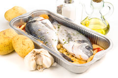Dorada raw fish ready to be cooked in tray Stock Photography