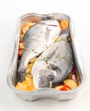 Dorada raw fish ready to be cooked in tray Stock Photo
