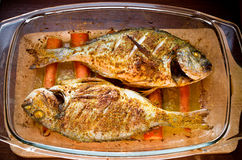 Dorade with curry on carrots in oriental style Stock Images