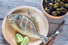 Dorade grelhado Royale Fish com couves-de-Bruxelas cozidas foto de stock royalty free