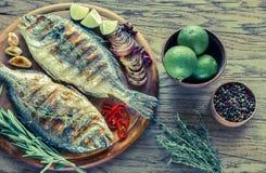 Dorade grelhado Royale Fish na placa de madeira imagem de stock