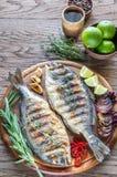 Dorade grelhado Royale Fish na placa de madeira fotos de stock