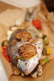 Dorade roasted in paper with vegetables Royalty Free Stock Image