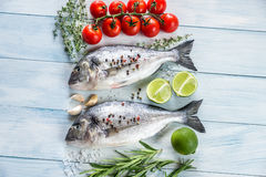 Dorade Royale Fish. On the wooden background Royalty Free Stock Photography