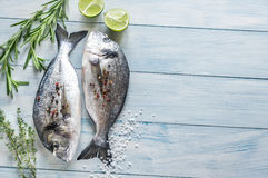 Dorade Royale Fish. On the wooden background Royalty Free Stock Image