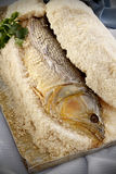 Dorado盐鱼 免版税库存图片