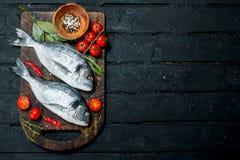 Dorado cru de poisson de mer avec des tomates, des herbes et des épices images stock