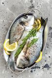 Dorado de los pescados frescos Pescados crudos del dorado con el limón y el romero Brema de mar o pescados del dorada Imagenes de archivo